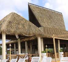 Thatch for Skylights of hawaii llc